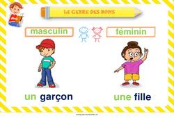 Genre des noms - Cycle 2 - Affiche de classe