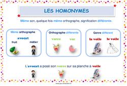 Homonymes – Cycle 3 – Affiche de classe