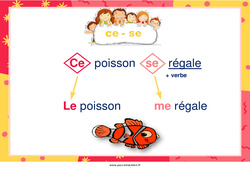 Homonymes de «ce» et «se» – Cycle 2 – Affiche de classe