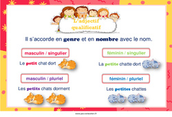 Adjectif qualificatif - Cycle 3 - Affiche de classe