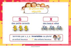 Pluriel des adjectifs – Cycle 2 – Affiche de classe