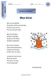 Mon hiver – Cm1 – Lecture compréhension – Poésie