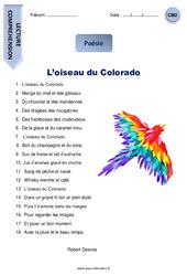 L'oiseau du Colorado – Cm2 – Lecture compréhension – Poésie