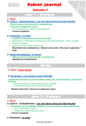 Semaine 7 – Cm1 – Cahier journal – PES – Stagiaires, jeunes profs…