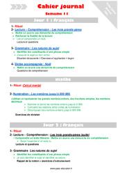 Semaine 11 - Cm1 - Cahier journal - PES - Stagiaires, jeunes profs...