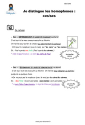 Je distingue les homophones : ces/ses – CE2 – CM1 – Leçon