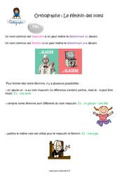 Le féminin des noms - CM1 - Leçon