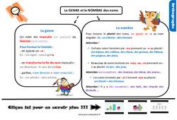 Leçon, trace écrite sur le genre et le nombre des noms au Cm1