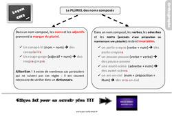 Leçon, trace écrite sur le pluriel des noms composés au Cm2