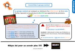 Leçon, trace écrite sur l'accord dans le groupe nominal au Cm1