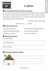 Exercices, révisions sur la phrase – Ce2