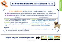 Leçon, trace écrite sur le groupe nominal au Ce2
