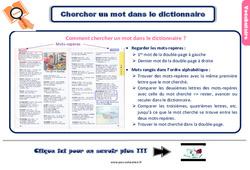 Leçon, trace écrite sur chercher un mot dans le dictionnaire au Ce2