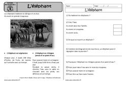 L'éléphant - Cp - Lecture documentaire - Compréhension