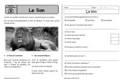 Le lion - Cp - Lecture documentaire - Compréhension