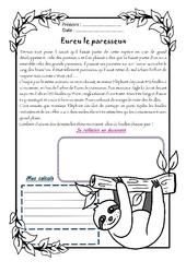 Eureu le paresseux – Cm1 – 1 histoire 1 problème
