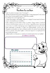 Rochon cochon - Cm1 - 1 histoire 1 problème