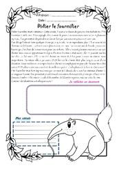 Didier le fourmilier – Cm2 – 1 histoire 1 problème