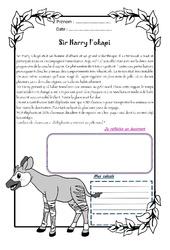 Sir Harry l'okapi – Cm2 – 1 histoire 1 problème