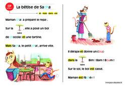 La bêtise de Sacha – CP – Lecture compréhension – Histoire illustrée – Niveau 1