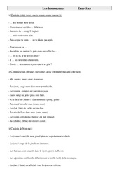 Homonymes – Cm1 – Exercices – Vocabulaire – Cycle 3