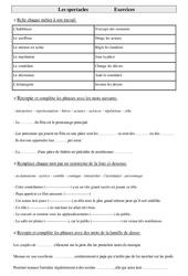 Exercices de vocabulaire cm1- cycle 3: Les spectacles