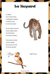 Le léopard de Robert Desnos – Poésie animaux – cycle 3 : ce2 cm1 cm2