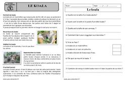 Le koala - Ce1 - Lecture documentaire