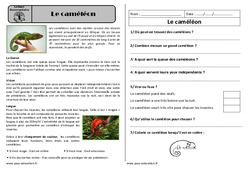 Le caméléon - Ce1 - Lecture documentaire