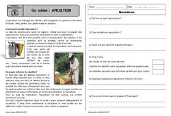 Apiculteur - Ce1 - Lecture documentaire