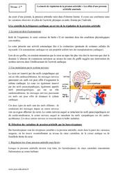 Boucle de régulation de la pression artérielle - Seconde - Cours