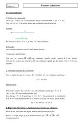 Vecteurs colinéaires – Première – Cours