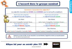 Leçon, trace écrite sur l'accord dans le groupe nominal au Ce2