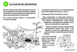 La course du printemps – CE1 – Lecture compréhension – Histoire illustrée – Niveau 2