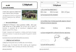 L'éléphant – Cp – Lecture documentaire