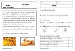 Le miel – Cp – Lecture compréhension