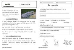 Le crocodile – Cp –  Texte informatif – Lecture