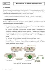 Perturbation du génome et cancérisation – Première – Cours