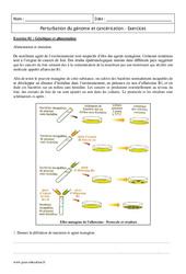 Perturbation du génome et cancérisation – Première – Exercices corrigés