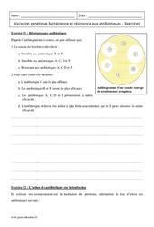 Résistance aux antibiotiques – Variation génétique bactérienne  – Première – Exercices