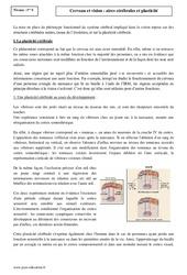 Cerveau et vision – Aires cérébrales et plasticité – Première – Cours