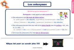 Leçon, trace écrite sur les antonymes – Ce2
