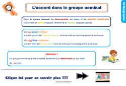 Leçon, trace écrite sur l'accord dans le groupe nominal au Ce1