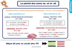 Leçon, trace écrite sur le pluriel des noms en -al et -ail au Ce2