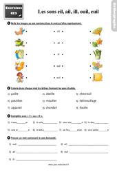 Exercices, révisions avec les corrections sur les sons eil(l), ail(l), ill, ouil(l), euil(l) – Ce2