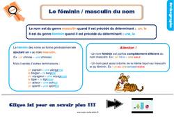 Leçon, trace écrite sur le féminin, masculin des noms au Ce1