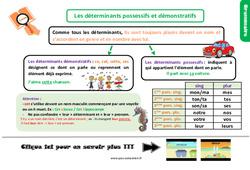 Leçon, trace écrite sur les déterminants possessifs et démonstratifs – Cm1