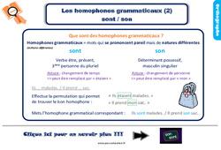 Leçon, trace écrite sur les homophones grammaticaux sont / son – Ce2