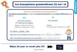 Leçon, trace écrite sur les homophones grammaticaux est / et – Ce2