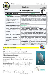 Le requin pèlerin – CM1 – CM2 – Lecture documentaire animalier – EDL